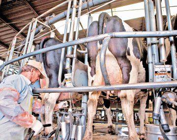 evaluación. Los problemas que registran los productores también los experimentan los industriales.