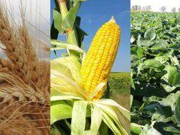 matba rofex alcanzo en abril un record de contratos agropecuarios