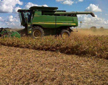 Las retenciones a la soja serán del 33%, pero habrá bajas para los productos regionales.