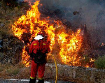 La Unión Europea (UE) debió mandar aviones extintores de incendios.