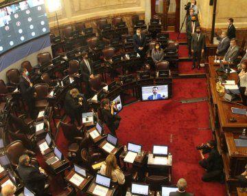 El Senado sesiona para tratar un proyecto sobre caducidad de partidos políticos.