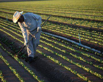 Federación Agraria celebró el comienzo del pago de las compensaciones a pequeños productores.