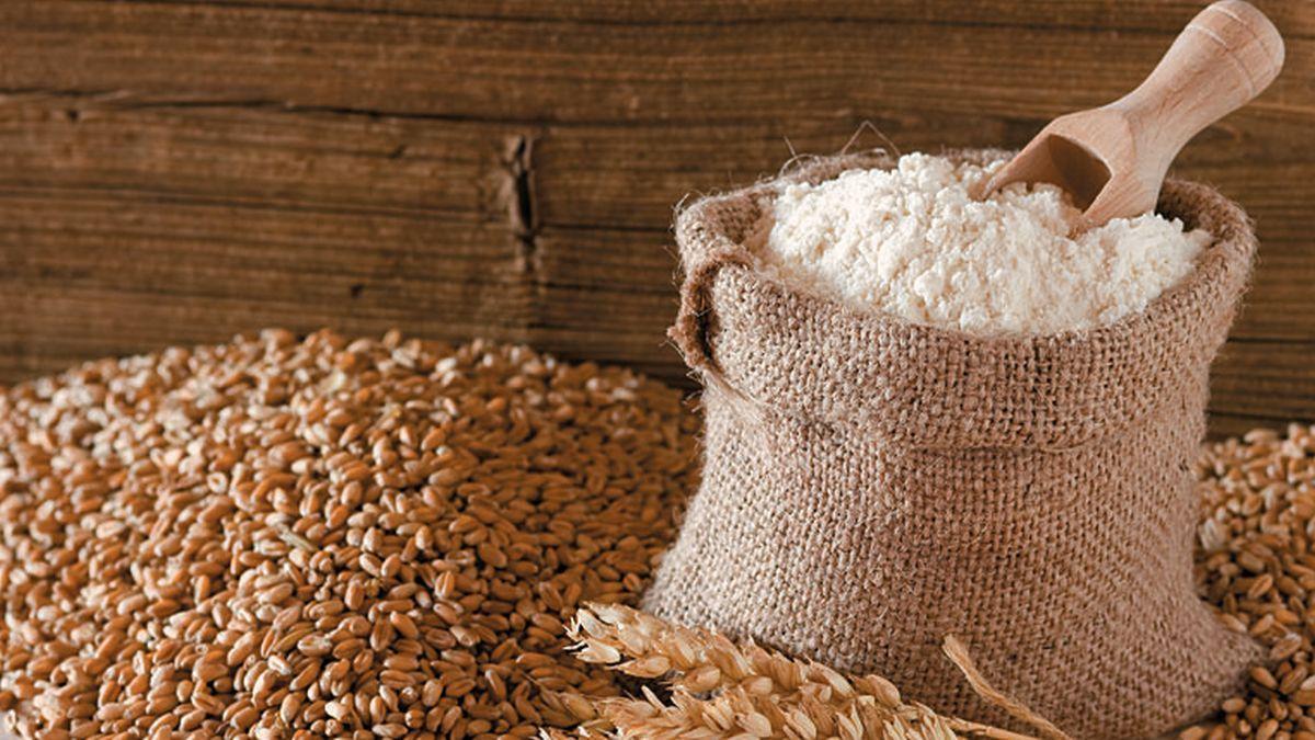 aspectos centrales del regimen de fomento al desarrollo agroindustrial