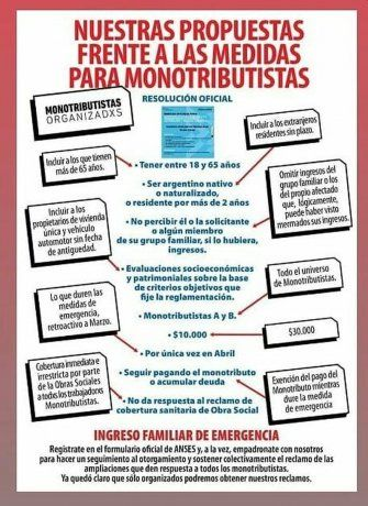 Infografía de Monotributistas Organizados donde se plantean los reclamos al Gobierno.