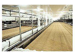 Brasil es elprincipalcompradorde cebadaargentina,pero el paístambiénprovee aChile,Colombia yPerú, segúndatosoficiales.